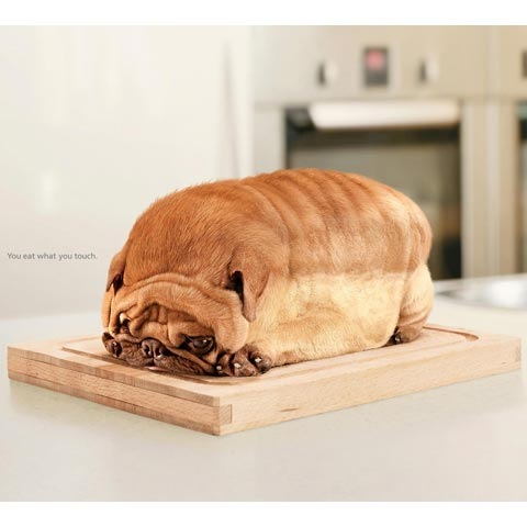 lionbread 100 Most Funny and Creative Advertisement Designs