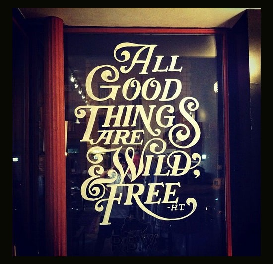 allgoodthingsarewildandfree 70 Beautiful Typography Designs Truly Jaw Dropping