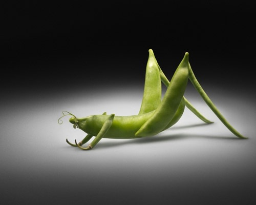 greenpeas 40 Funny But Creative Photo Manipulation Designs