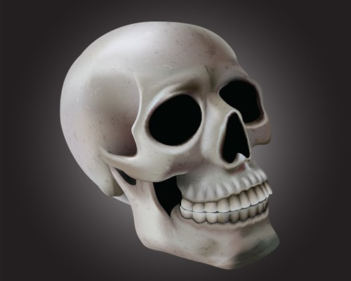 skull illustration thumb Best Of Web And Design In October 2013