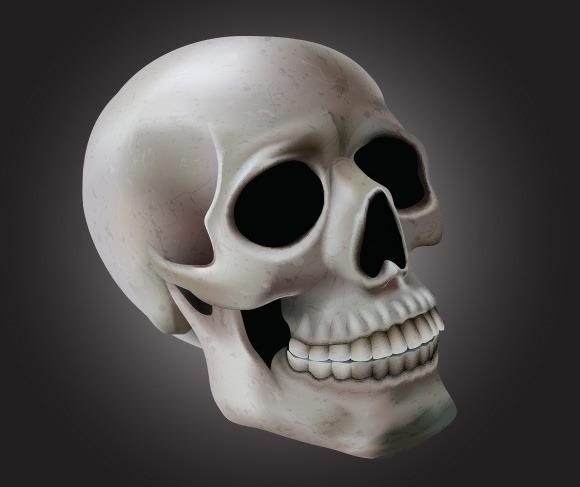 skull illustration thumb 100 best Illustrator tutorials from 2013