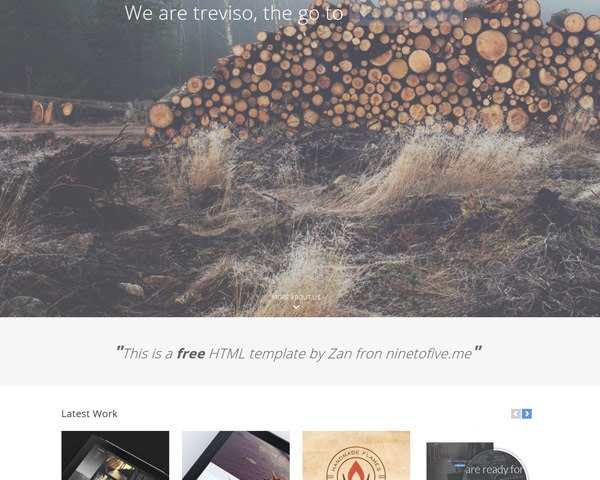 treviseo thumb 50 best free html responsive templates