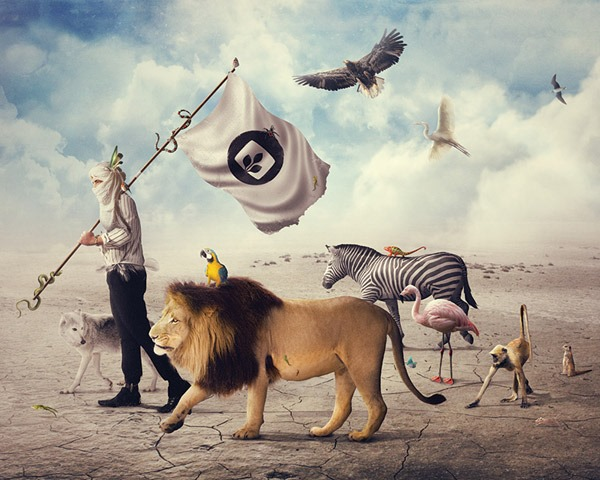 animal photo manipulations thumb Best of the web and design in August 2014