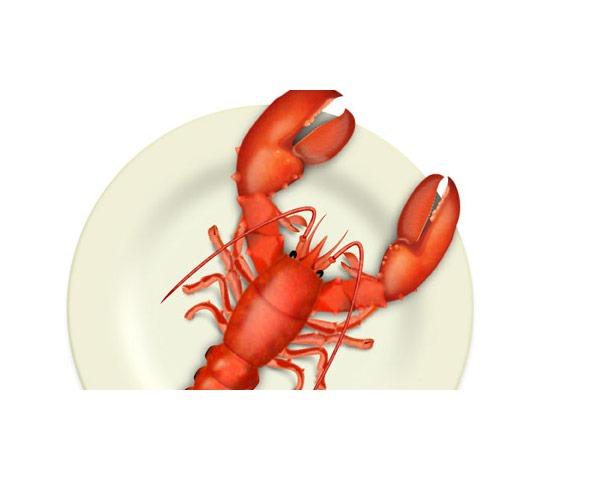 lobster thumb 60 Best illustrator tutorials from 2014