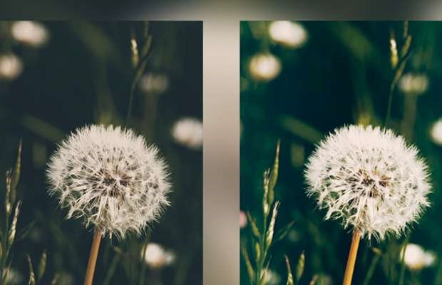 enhanced 15 fresh must download Photoshop actions