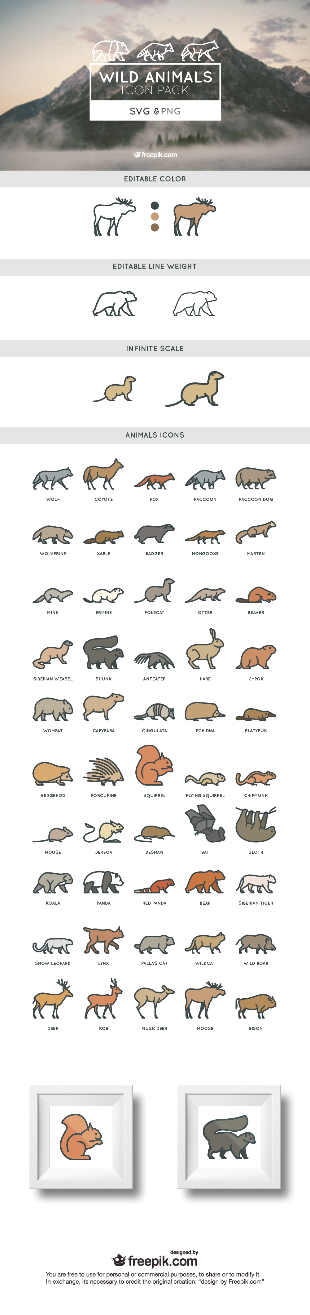 ANIMALS COVER 01 01 50 wild free animals SVG and PNG icon set