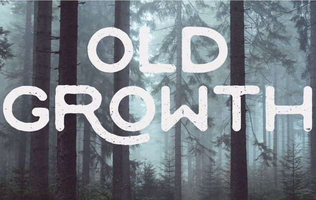 old growth 50 best free fonts from 2016