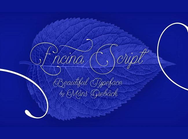 encinascript 50 free must download Calligraphy fonts