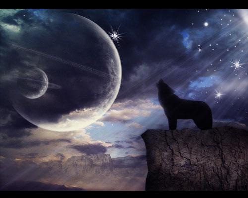 dog  26 Spectacular Surreal Magical Tutorials