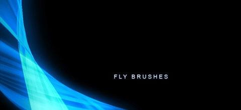 fly-brushes