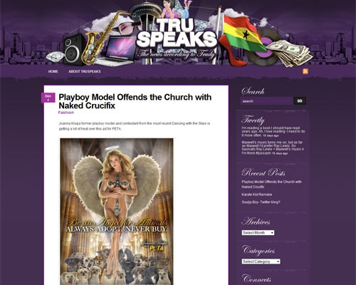 truspeaks 50 Most Amazing Beautiful Blog Designs