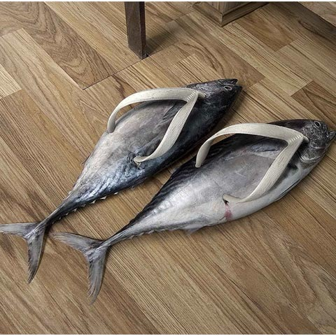fish-shoes