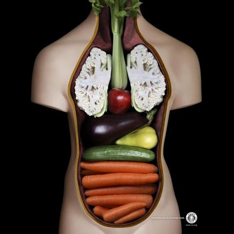 vege 100 Most Funny and Creative Advertisement Designs