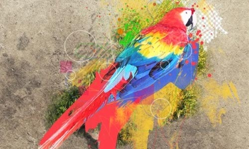 birdwatercolor 100 Photoshop Tutorials For Learning Photo Manipulation