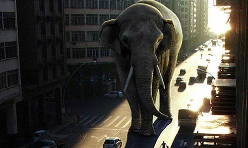 elephant-in-city