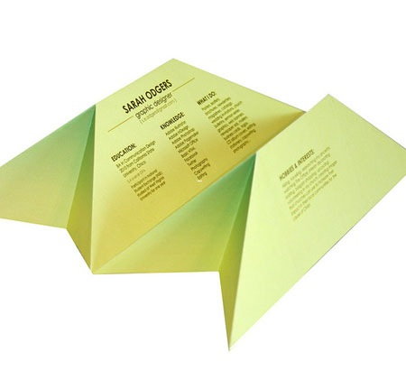 3d 20 Creative Resume Designs Which Will Amaze Any Potential Employer
