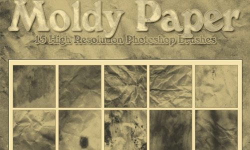 moldy-paper
