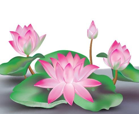 flower 40 Fresh Illustrator Tutorials From 2011