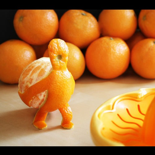 orangeman 20 Funny Photographs To Make You Laugh Out Loud