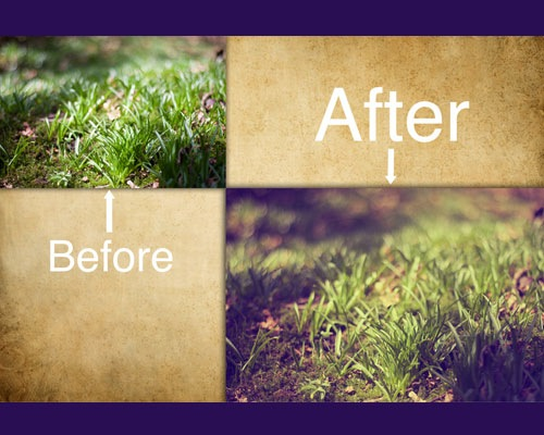 grass 25 Time Saving Photoshop Actions For Enhancing Photographs