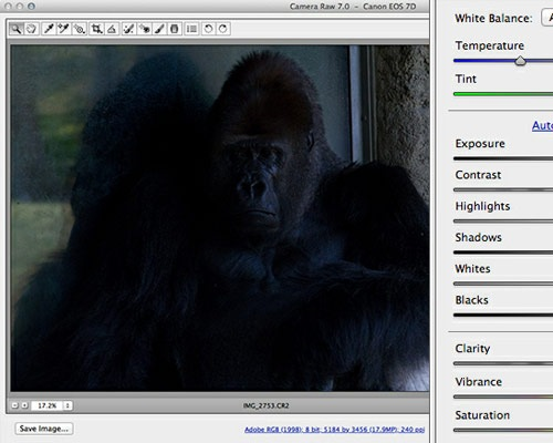 cameraraw 35 Tutorials For Mastering All The New Features In Photoshop CS6