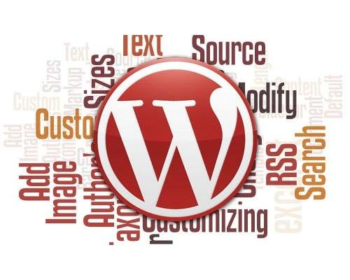 customise-wordpress