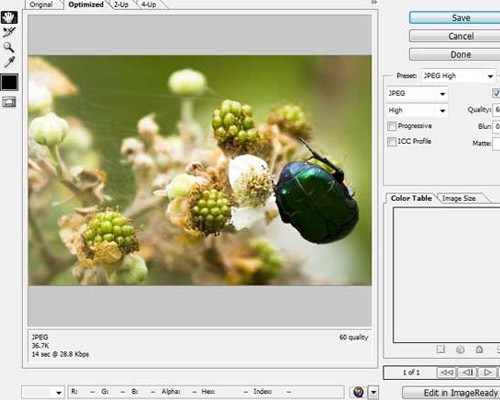 saveforweb Comprehensive Guides For Understanding The Basic Fundamentals Of Photoshop