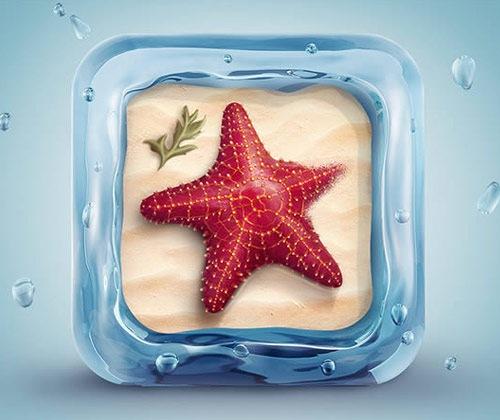 3d-star-fish