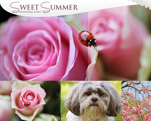 sweet summer thumb1 100 Must download free Photoshop actions (And everything else you should know)