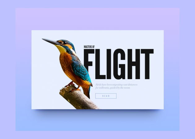 text image Best of the web for digital design and web development January 2016