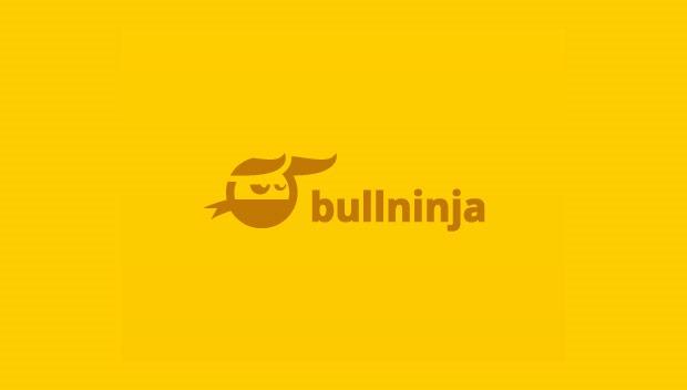 bull ninja 20 Creative flat modern logo designs
