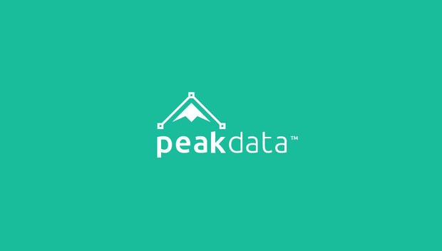peak data 20 Creative flat modern logo designs