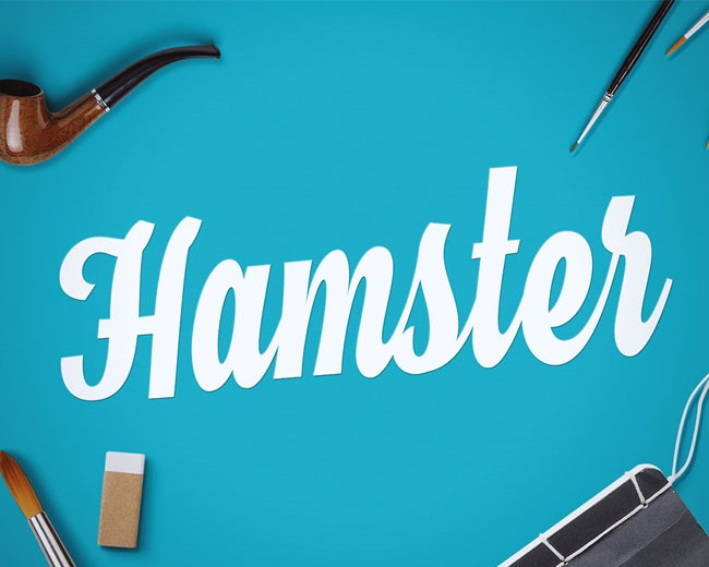 hamsters 100 Best free fonts to use for creating a logo