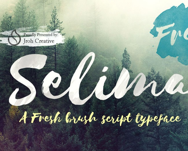 selima 100 Best free fonts to use for creating a logo