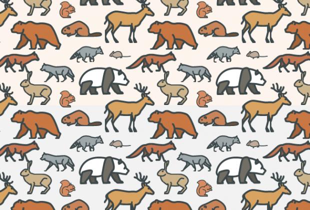 wild-animal-pattern