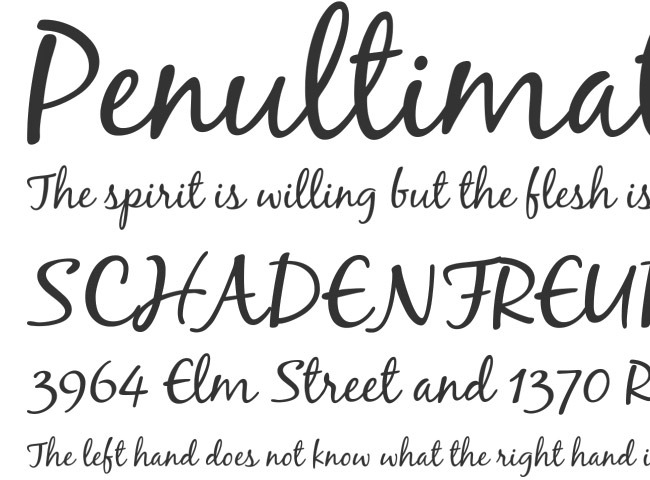 penultimate 50 free must download Calligraphy fonts